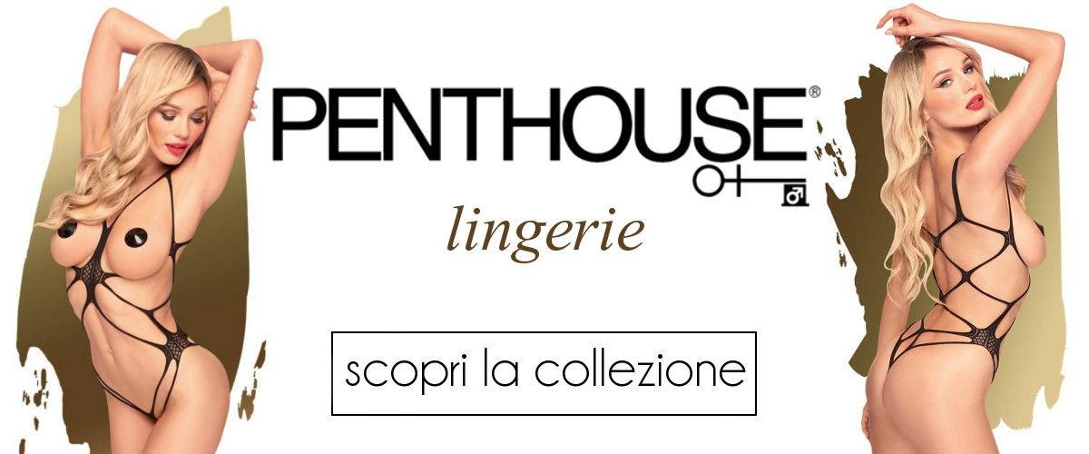 penthouse lingerie